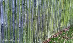 Factores climáticos que deterioran la madera