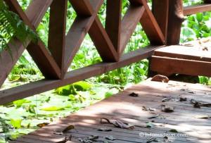 ¿Cómo proteger la madera durante la temporada lluviosa?