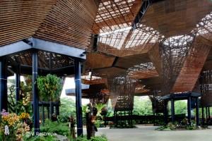 ¿Es posible tener maderas durables y amigables con el medio ambiente?
