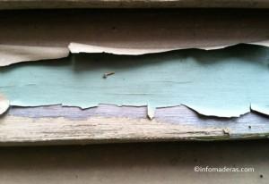 Tips: ¿Cómo remover los acabados anteriores en la madera?