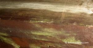 Tips: Cómo remover los hongos de sus muebles en madera