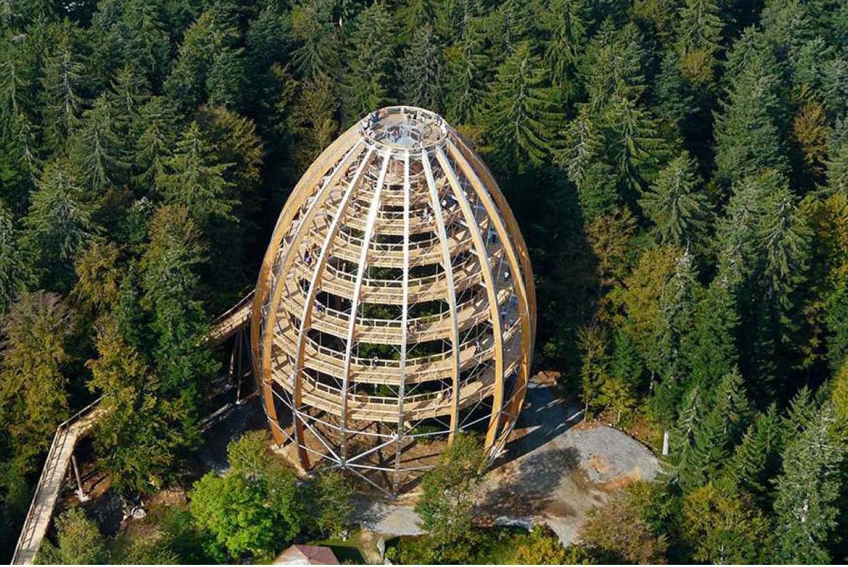 Torre del árbol en el parque nacional Bosque de Baviera
